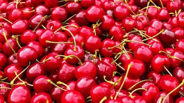 Las cerezas frescas tienen protocolo oficial de calidad