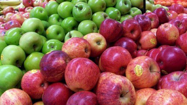 Producción de manzanas: se recuperan las exportaciones tras diez años de caída