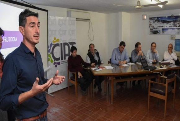 Tras los pasos del vino, la fruticultura lanzó un plan estratégico para el sector