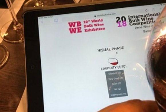 Bodegas mendocinas de vino a granel ganaron  premios internacionales
