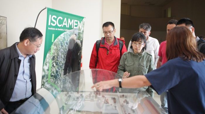 Se firmó un protocolo para exportar cerezas mendocinas a China