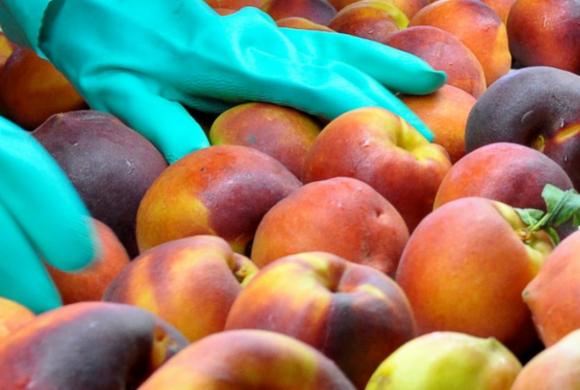 Una pyme mendocina elabora el primer snack frutal del país