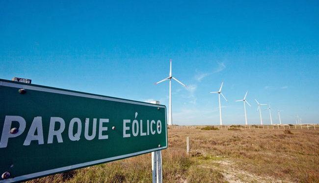 Mendoza puede cambiar vino por energía eólica y termosolar
