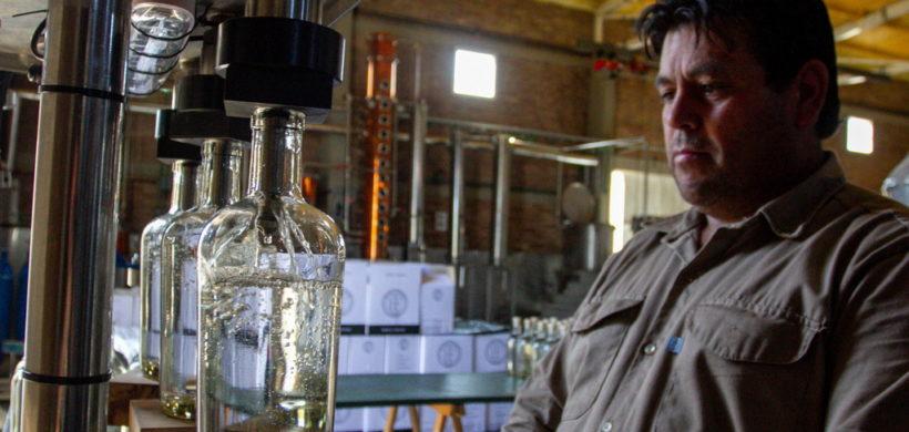 Destilados: en Mendoza se recupera el sector y apunta a las exportaciones