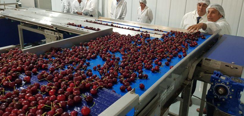 Exportaciones: el gran problema de Mendoza es estar en la Argentina
