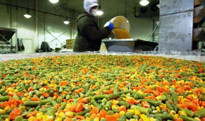 La exportación de hortalizas industrializadas mantiene un crecimiento sostenido